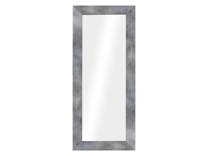 Lustro Jyvaskyla AO 60 x 148 cm Pomieszczenie Salon Lustro z ramą Prostokątne Ścienne Pomieszczenie Sypialnia