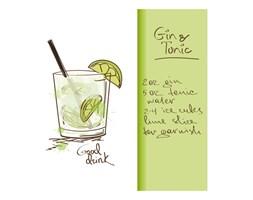 Obraz Deco panel Gin 30 x 30 cm