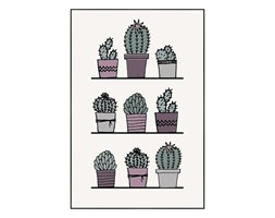 Obraz Deco box Kaktusy 60 x 90 cm