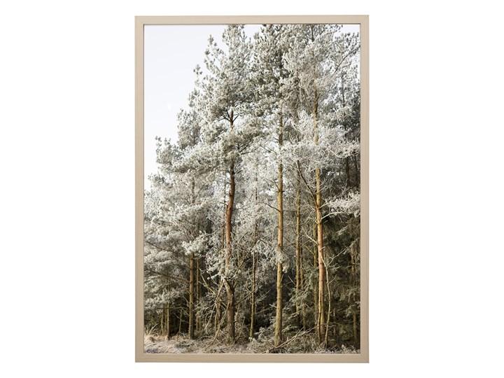 POSTER GRAFIKA NATURA BLOOMINGVILLE 62x42 cm