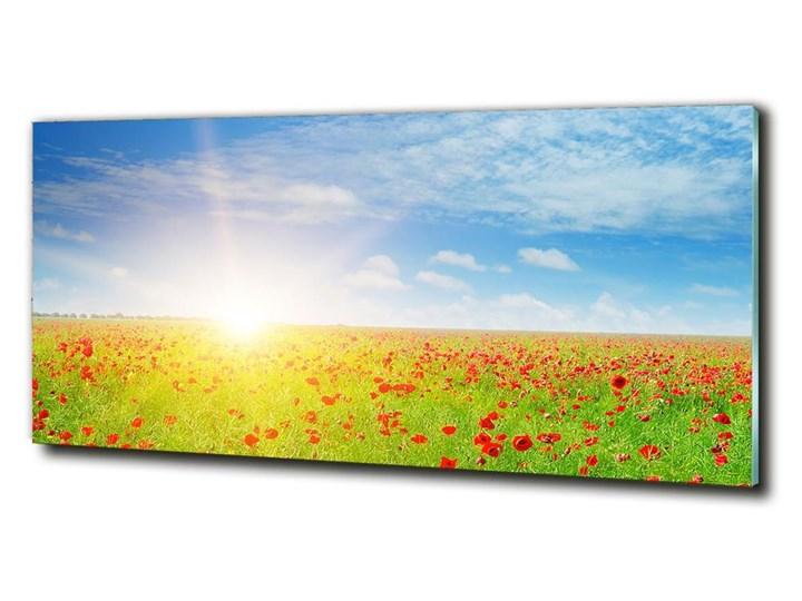 Foto obraz szkło hartowane Pole maków