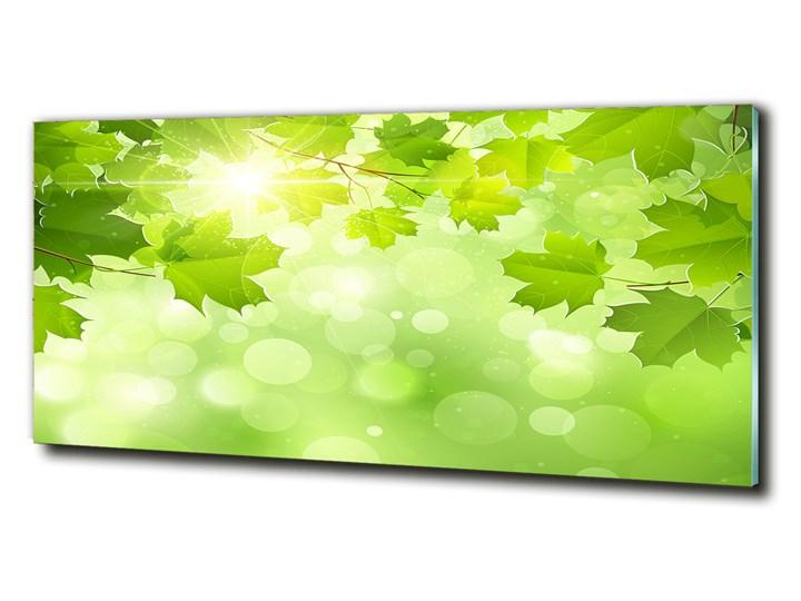 Foto obraz szklany Liście kasztanowca