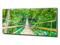 Foto obraz szklany Most las bambusowy