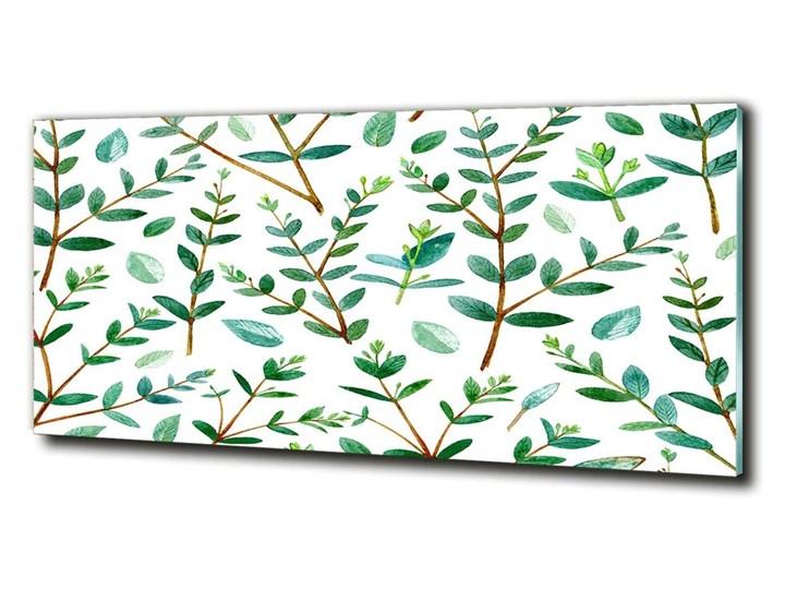 Foto obraz szkło hartowane Eukaliptus