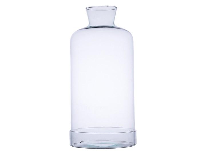 Szklane terrarium W-300+cylinder H:46cm D:22cm