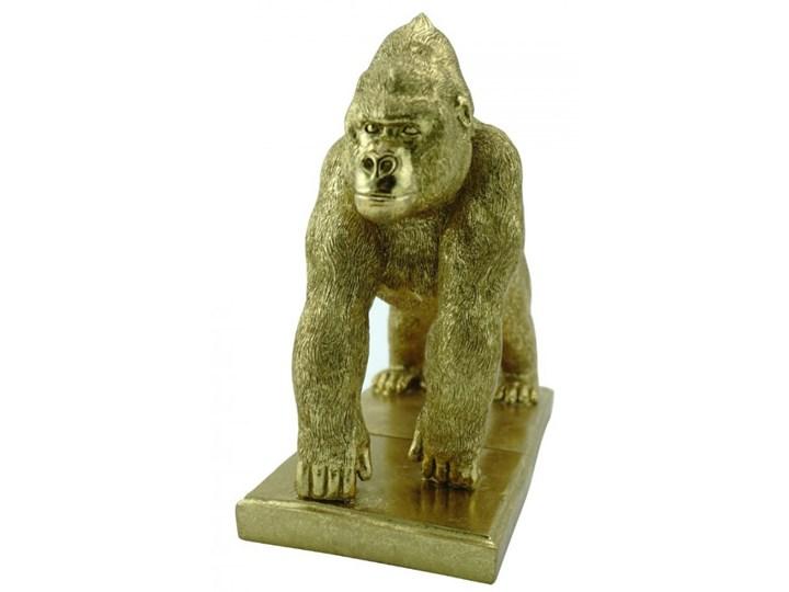 Gorilla Book End kod: 200Q304889