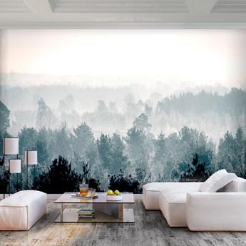 Fototapeta - Zimowy las