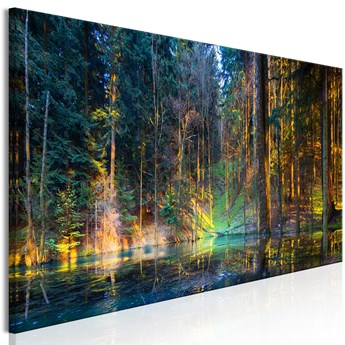 Obraz - Staw w lesie (1-częściowy) wąski