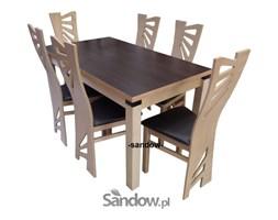 stół S-18 (blat laminat) 80x140x240 + 6 krzeseł K-56(mewa)