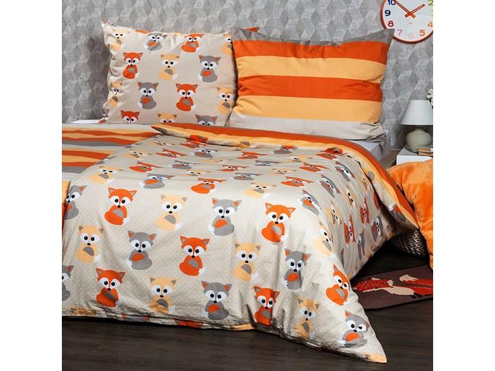 4Home Pościel bawełniana Little Fox, 140 x 220 cm, 70 x 90 cm, 140 x 220 cm, 70 x 90 cm