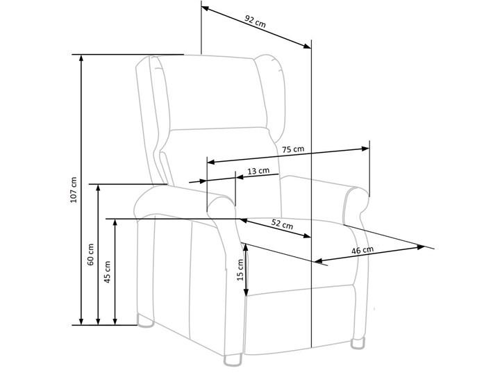 Rozkładany fotel uszak wypoczynkowy Alden - popielaty Pomieszczenie Salon Fotel rozkładany Kolor Szary