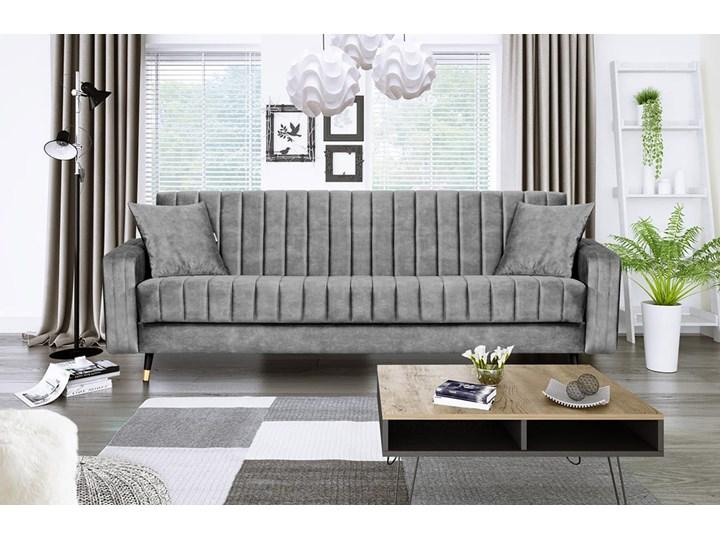 Sofa DIAMOND z funkcją spania Stała konstrukcja Typ Gładkie