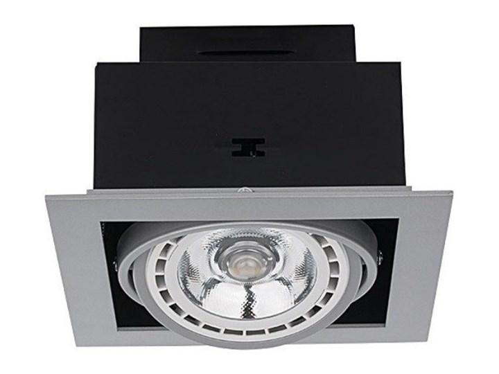 Lampa DOWNLIGHT SILVER ES111