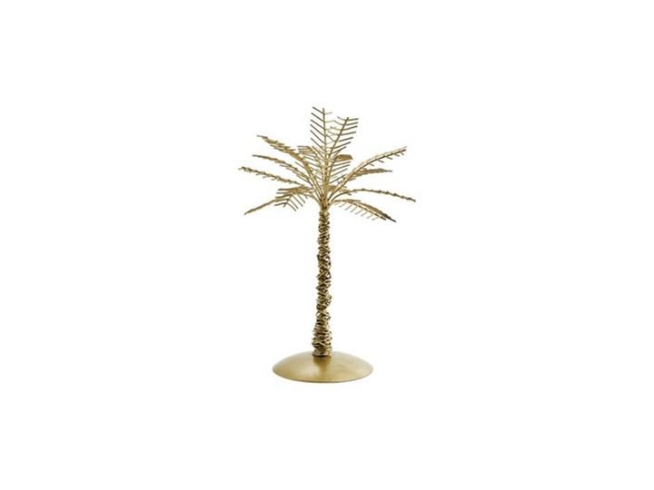 Madam Stoltz - Dekoracyjne drzewo palmowe