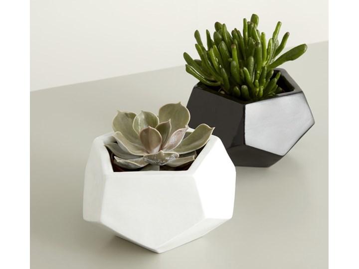 Doniczka ceramiczna GoodHome ozdobna 9 cm biała Ceramika Doniczka na kwiaty Kolor Biały Kategoria Doniczki i kwietniki