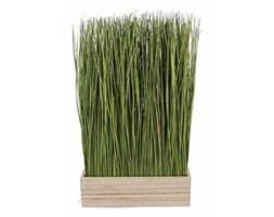Płotek trawy naturalnej w osłonce