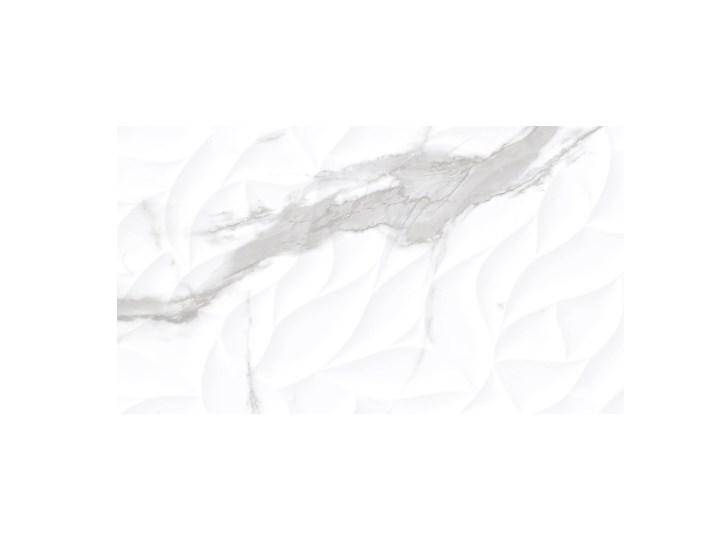 Glazura Cosmopolitan 30 x 60 cm wave 0,9 m2 Płytka bazowa 30x60 cm Powierzchnia Polerowana Prostokąt Kategoria Płytki