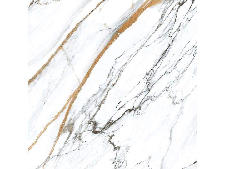 Oikos Gold 60x60 plytka imitująca marmur Płytki tarasowe Płytka bazowa Płytki podłogowe Płytki ścienne Kwadrat Kafle 60x60 cm Kategoria Płytki