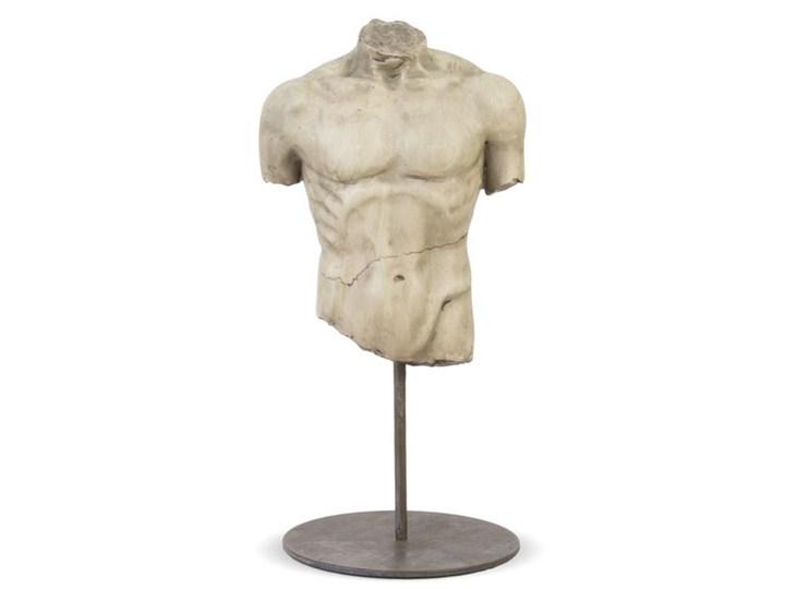 """POPIERSIE DEKORACYJNE NA POSTUMENCIE METALOWYM""""ADONIS"""": 26,5x13,5x12 Tworzywo sztuczne Kategoria Figury i rzeźby Kolor Beżowy"""
