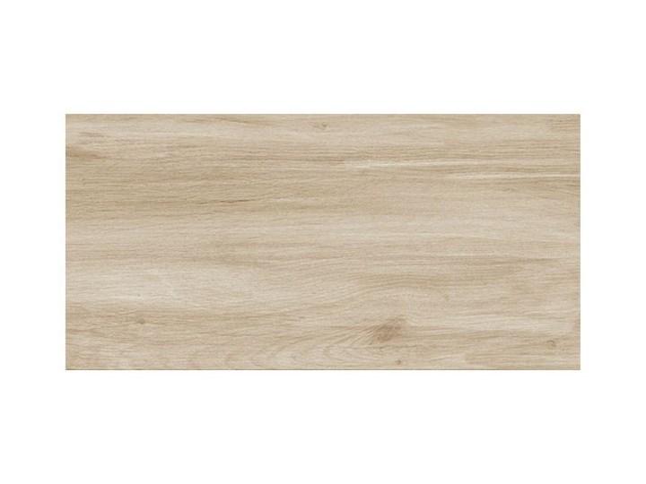 Gres szkliwiony Stargres Scandinavia 31 x 62 cm kremowy 1,54 m2 Płytki podłogowe Prostokąt Płytki tarasowe 31x62 cm Kategoria Płytki