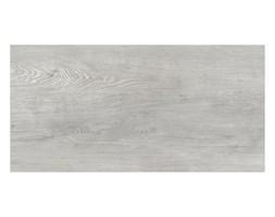 Gres szkliwiony Stargres Scandinavia 31 x 62 jasny szary 1,54 m2
