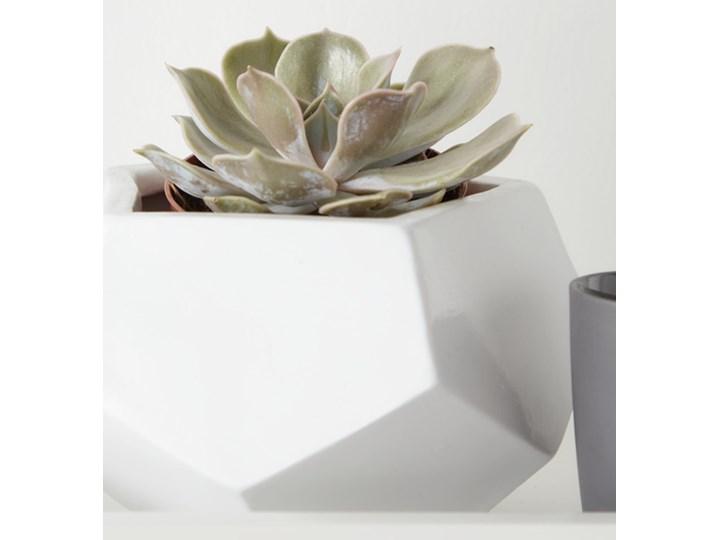 Doniczka ceramiczna GoodHome ozdobna 9 cm biała Doniczka na kwiaty Ceramika Kolor Biały