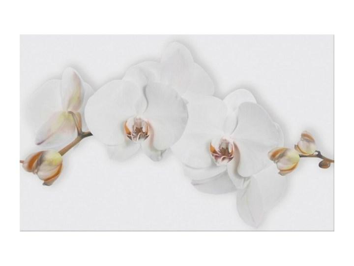 Płytka ścienna MARISOL biała inserto kwiaty błyszcząca 25x40 gat. I*