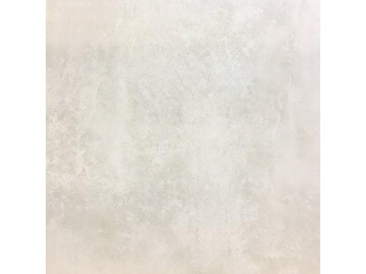 Gres szkliwiony STAMFORD jasnoszary mat 59,3x59,3 gat. I