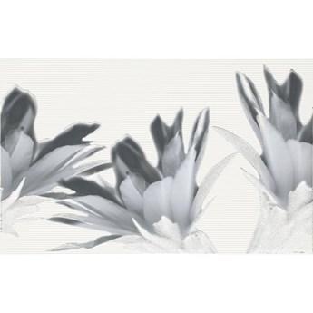 Płytka ścienna inserto VERNO black flower 25x40 gat. I