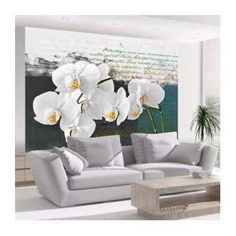 Fototapeta - Orchidea - inspiracja poety