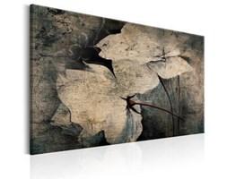 Obraz - Ogród wspomnień