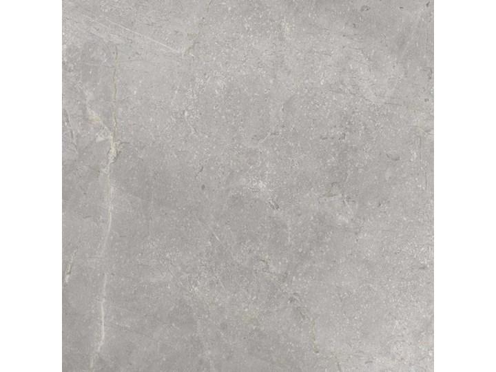 CERRAD MASTERSTONE SILVER MAT 59,7X59,7