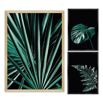 Zestaw obrazów Botanica 3szt., 70x100cm/ 40x50cm