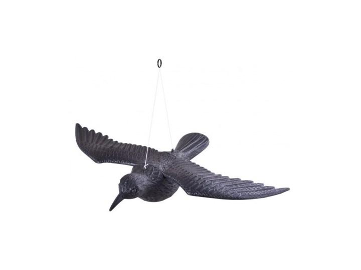 Kruk w locie - odstraszacz gołębi i innych ptaków Ptaki Kolor Czarny