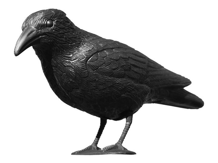 Kruk odstraszacz gołębi i innych ptaków Ptaki Kategoria Figurki ogrodowe