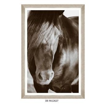 Obraz Arabian Beauty 80x120 DE-FA12627 MINDTHEGAP DE-FA12627