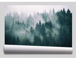 Fototapeta Las i góry we mgle