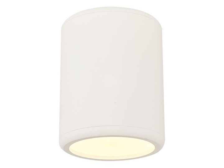 NATYNKOWY SPOT SUFITOWY LED OKRĄGŁY BIAŁY 1200-2,01 Oprawa stropowa Okrągłe Oprawa led Kategoria Oprawy oświetleniowe
