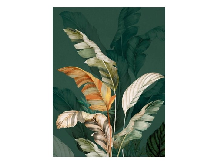 Obraz Canvas Botanic Green 60 x 80 cm Wykonanie Kolor Zielony
