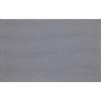 Płytka ścienna LIRA grey glossy 25x40 gat. I