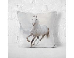 Poduszka - HORSE IN GALLOP