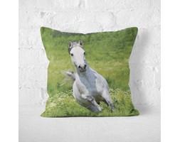 Poduszka - HORSE ON MEADOW