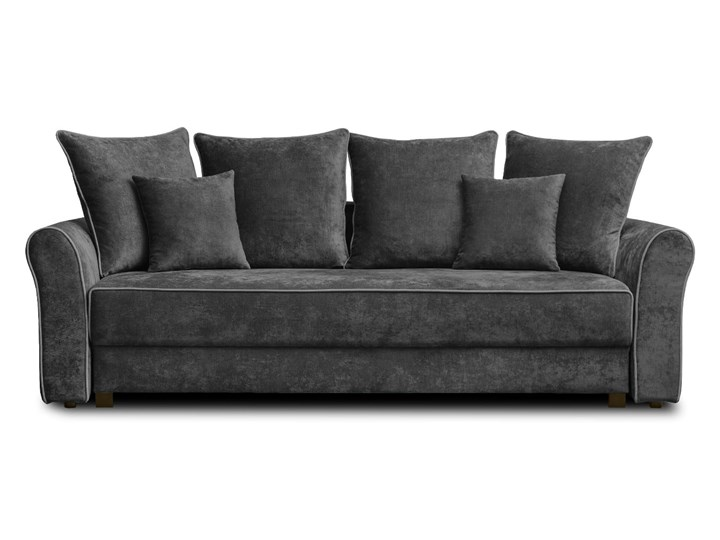 Sofa NEW YORK z funkcją spania Typ Gładkie Stała konstrukcja Styl Klasyczny