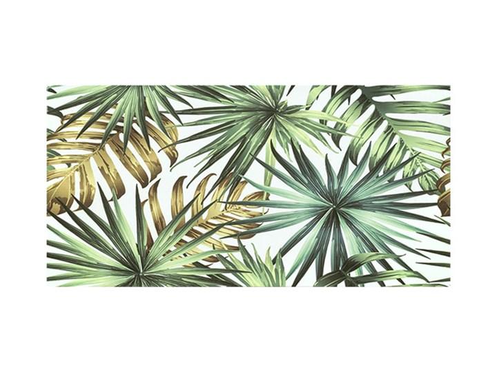 Dekor Nature Leaf Ceramstic 30 x 60 cm 30x60 cm Płytka dekoracyjna Prostokąt Płytki ścienne Powierzchnia Polerowana