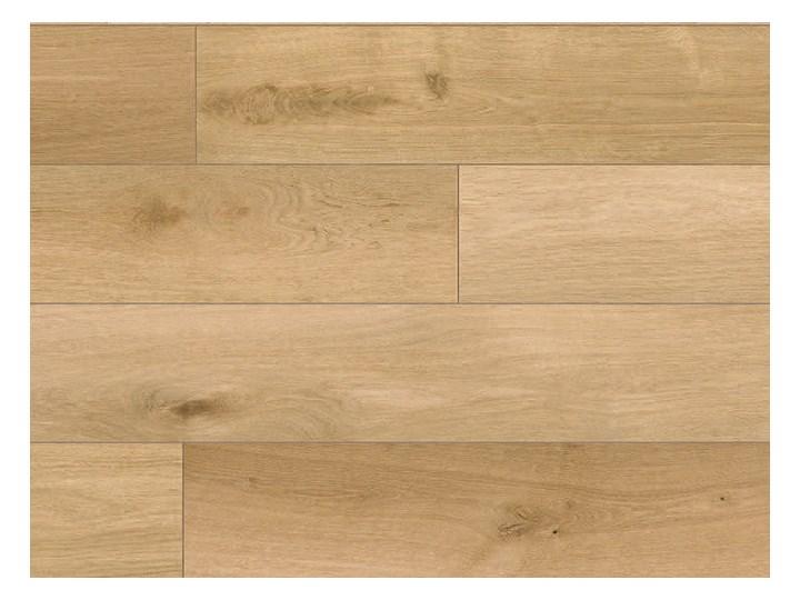 Panel Podłogowy wodoodporny Scandipure R073