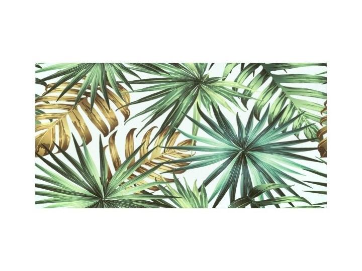 Dekor Nature Leaf Ceramstic 30 x 60 cm Płytka dekoracyjna Płytki ścienne Powierzchnia Polerowana 30x60 cm Prostokąt Kategoria Płytki