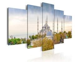 Obraz - Hagia Sophia - Stambuł, Turcja