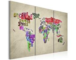 Obraz - Kolorowe państwa - tryptyk