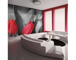 Fototapeta - Czerwone tulipany na czarno-białym tle