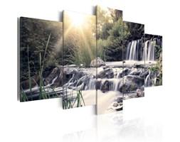 Obraz - Wodospad snów